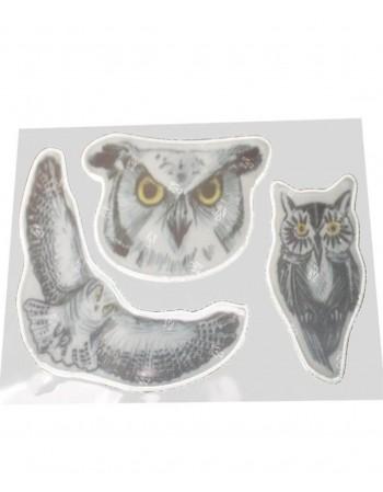 """Atšvaitas """"Owl"""""""